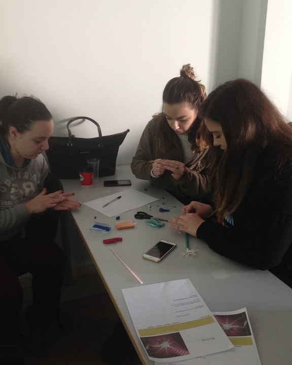 Neuroscience quiz game for the International Faculty CITY College Psychology students